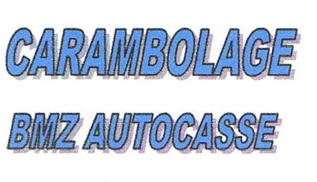 Logo BMZ AUTOCASSE