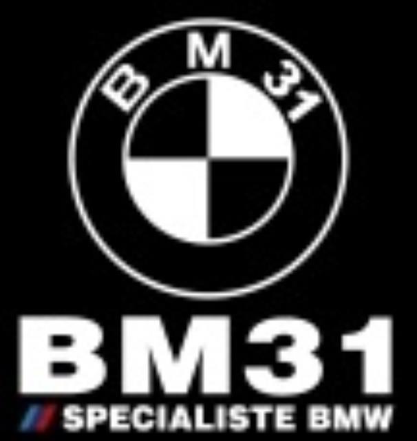 Logo BM31